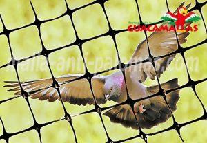 GUACAMALLA malla anti-aves