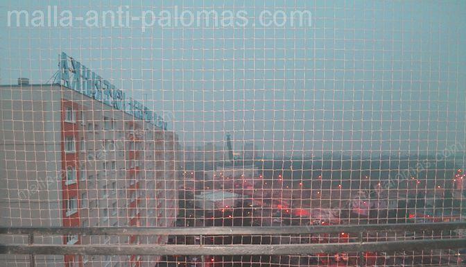 malla anti-palomas en ciudad