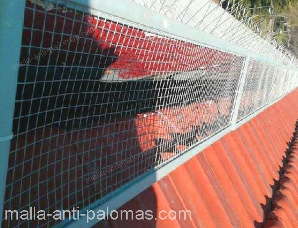 malla anti palomas con pinchos